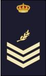 divisa oficial de policia presencial